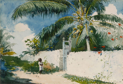 Art Prints of Garden in Nassau by Winslow Homer