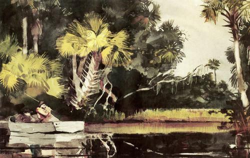 Art Prints of Homosassa Jungle by Winslow Homer