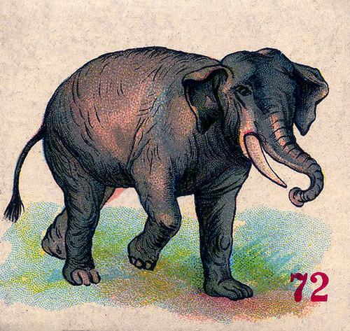Art Prints of Game Piece, Elephant, Vintage Game Pieces & Playing Cards