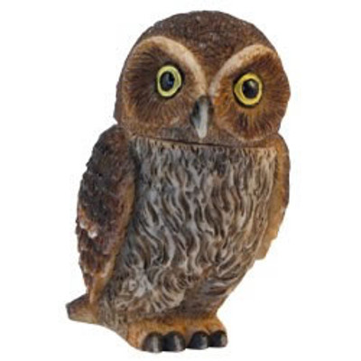 PB A - Elf Owl #PBZOW13