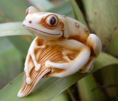 Gliding Frog - Adam Binder Club Exclusive