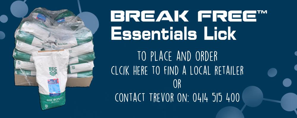 break-free-level-1-graphic-website-v2.jpg