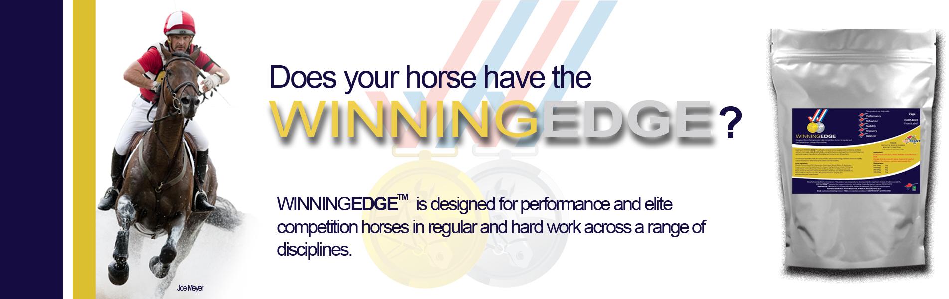 winningedge-banner.jpg