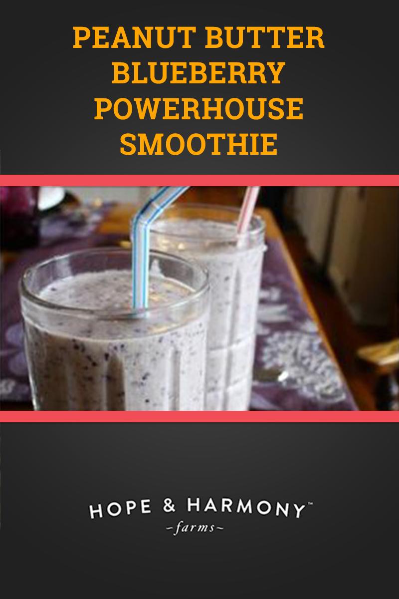 blueberry-pb-smoothie-v1.jpg