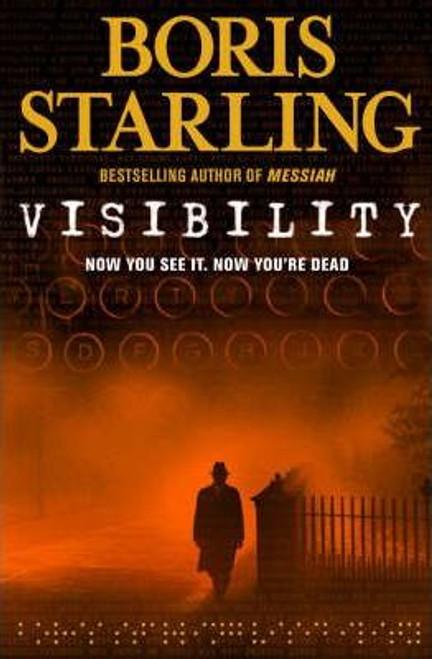 Starling , Boris / Visibility (Large Paperback)