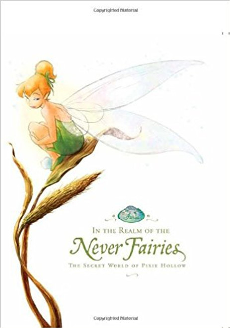 Disney Fairies: In the Realm of the Never Fairies: The Secret World of Pixie Hollow