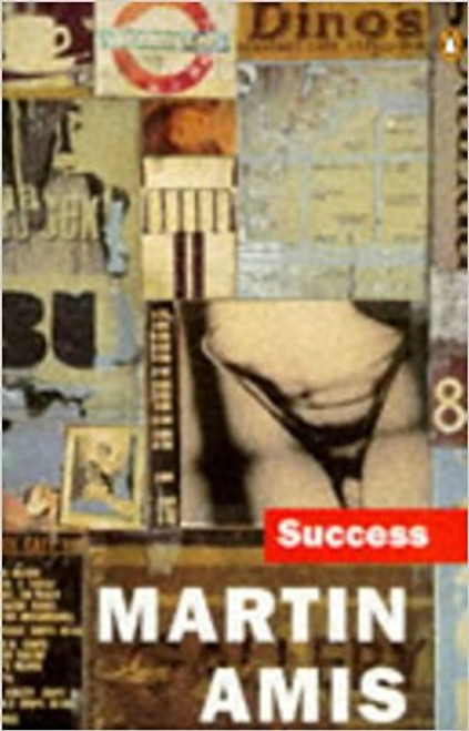 Amis, Martin / Success