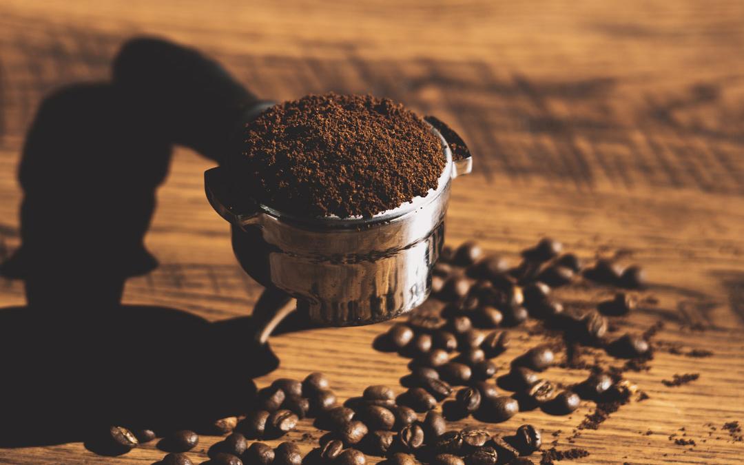 Fiddleheads Wholesale Coffee