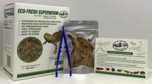 ProBugs Superworms Box