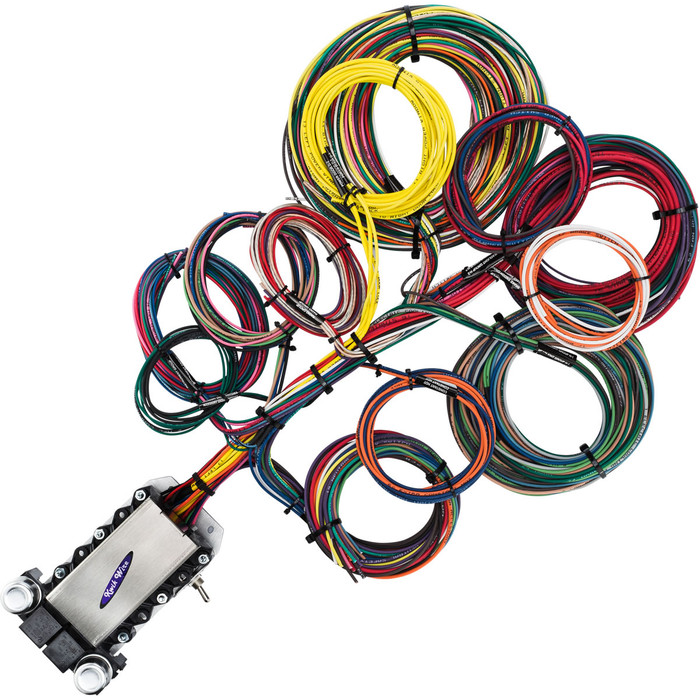 22 Circuit Wire Harness