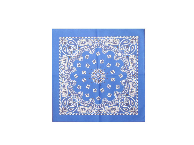 Royal Blue Paisley