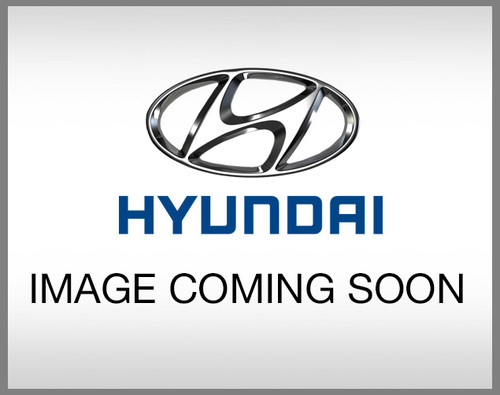 Hyundai Elantra GT Checkered Body Graphic