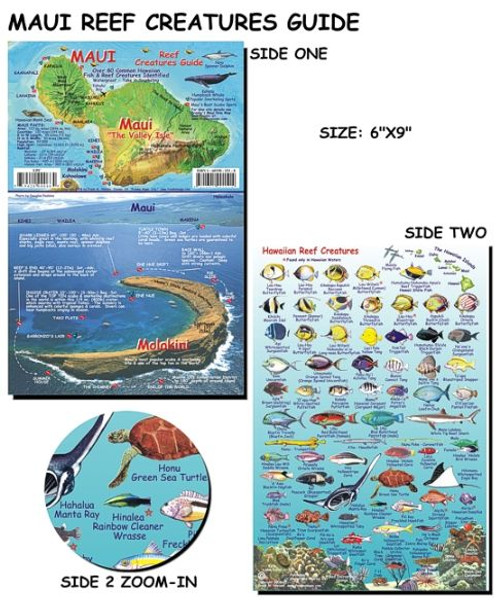 Waterproof Fish ID Card - Maui Hawaii