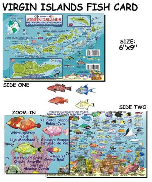 Waterproof Fish ID Card - Virgin Islands