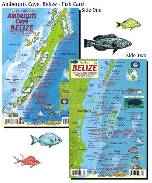 Waterproof Fish ID Card & Map - Belize - Ambergris Caye