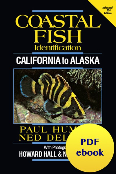 fish-cover-ebook-california.jpg