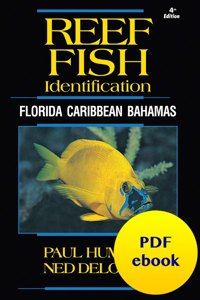 fish-cover-ebook-caribbean.jpg