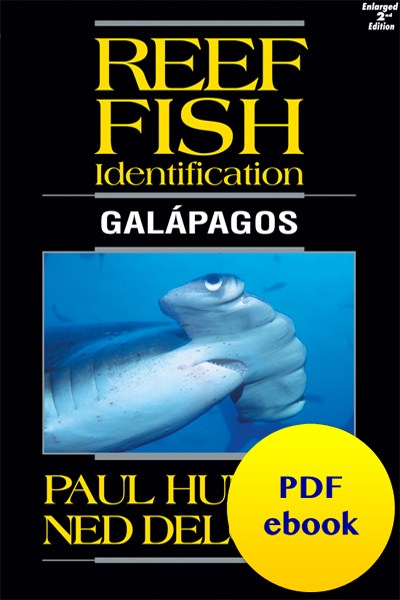 fish-cover-ebook-galapagos.jpg