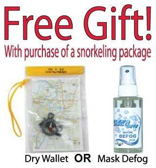 free-gift-options.jpg