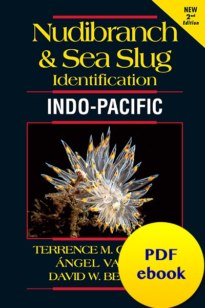 nudibranch-id-trop-pacific-cover-2nded.jpg