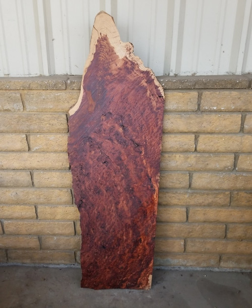 Historical Old Growth Redwood Burl RED14c02