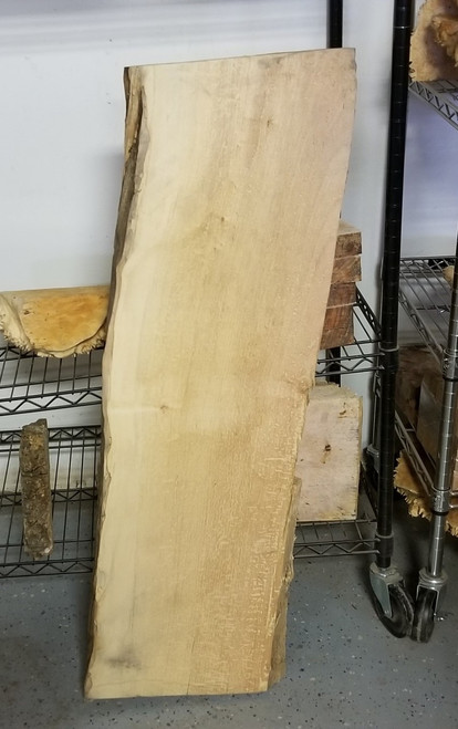 Live Edge Spalted Maple Lumber SPM14c04