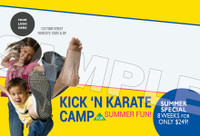 Kick 'N Karate Camp V3