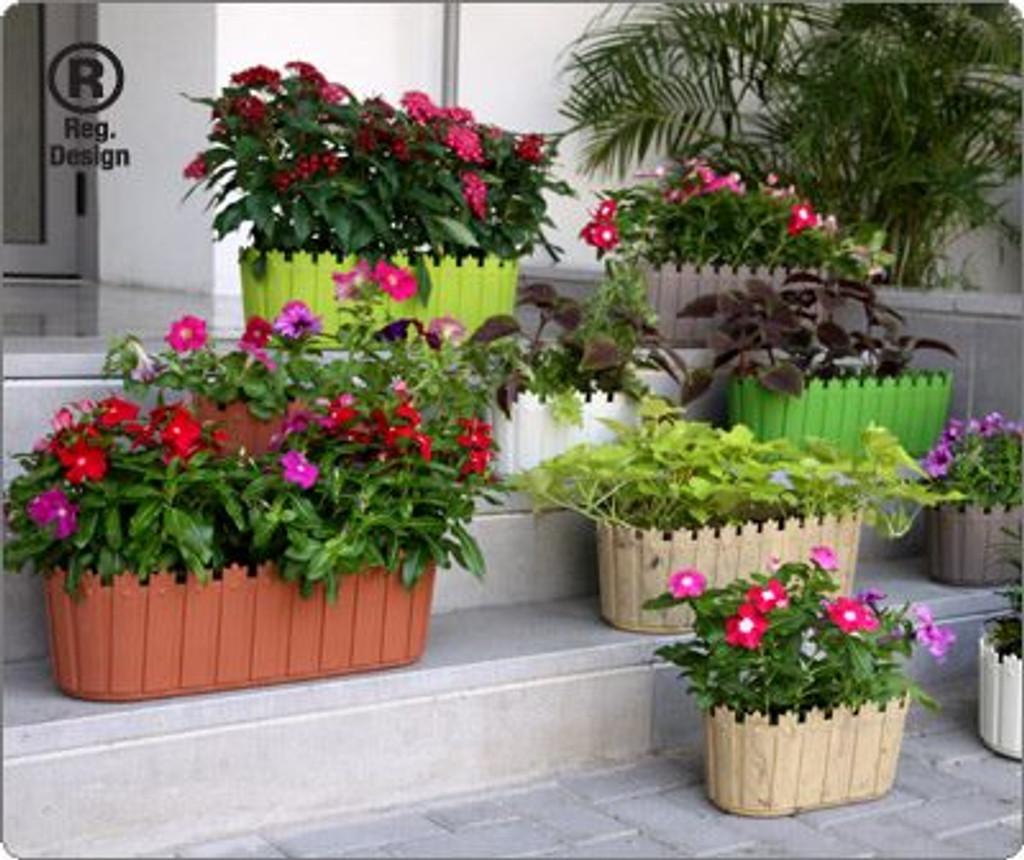 Colourful cottage planter