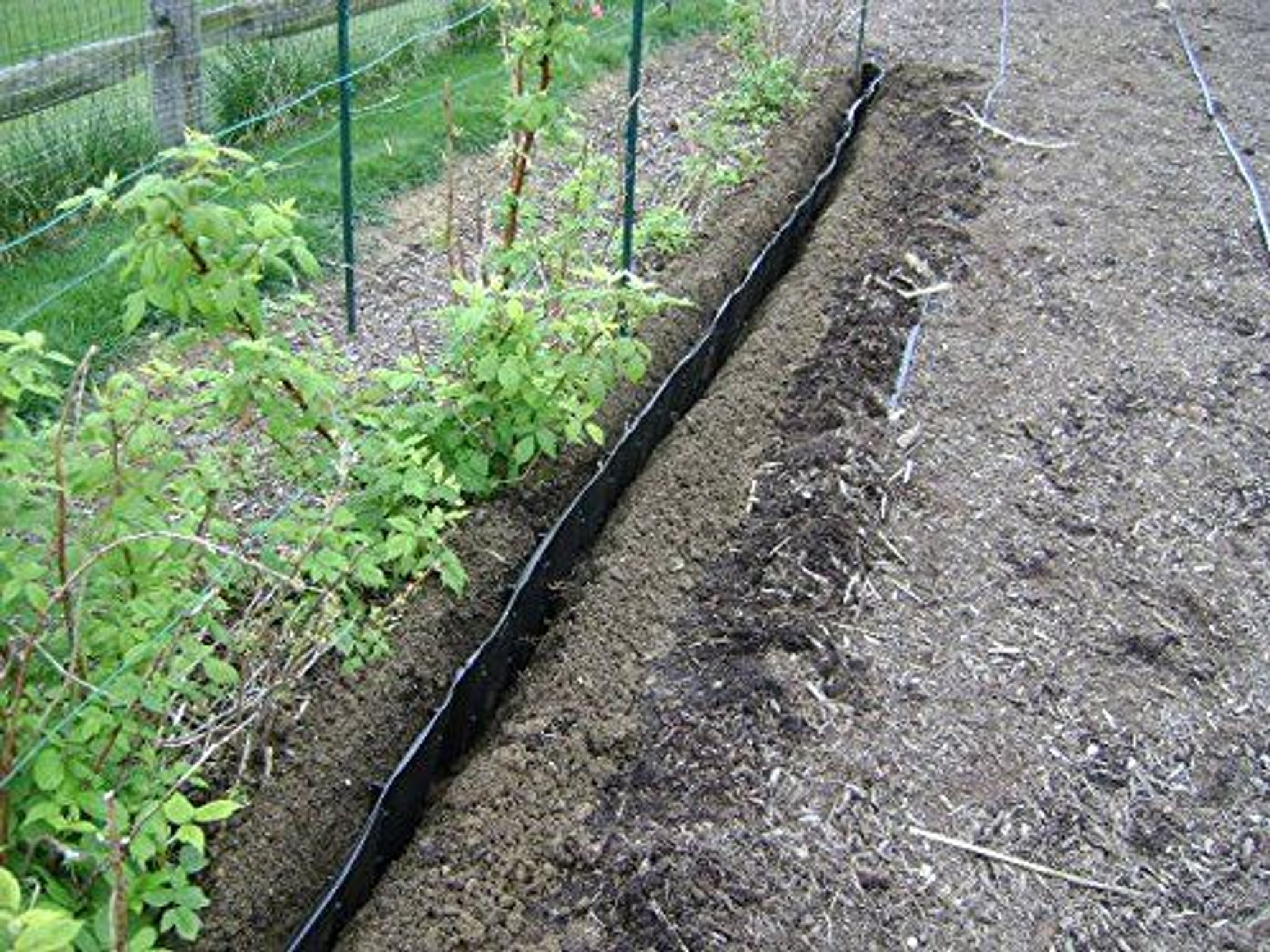 Vertical weed barrier - control spreading weeds by rhizomes on sale !