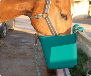 Plastic hang on trough feeder