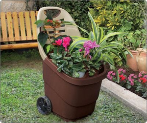 Flower Wheelbarrow