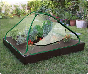 Raised cold frame