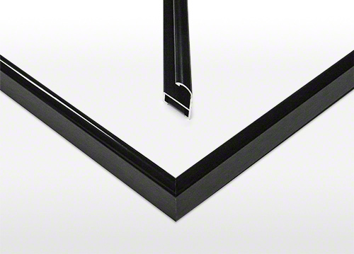 Standard Frame Detail