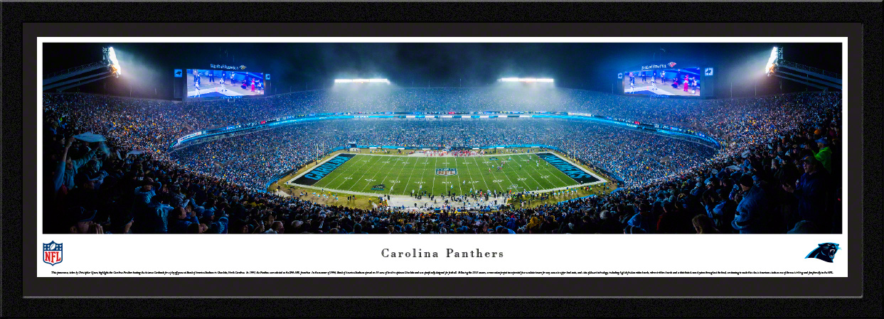 Carolina Panthers NFL Panoramic Fan Cave Wall Decor