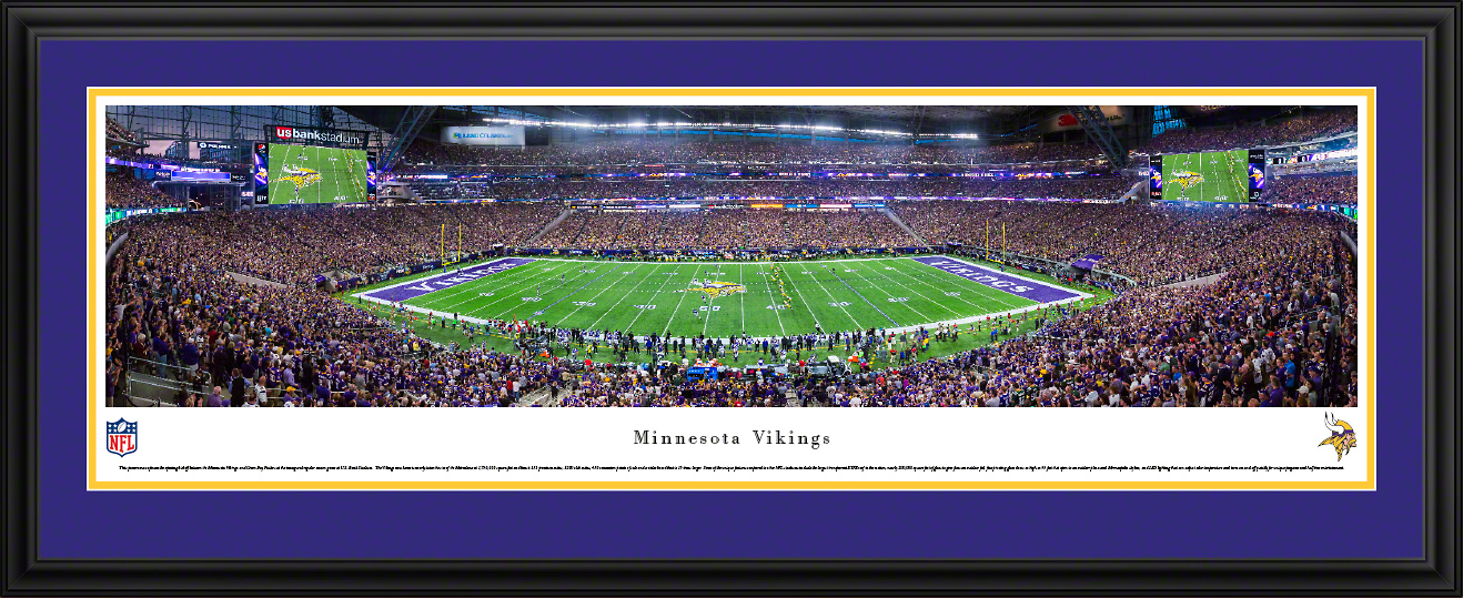 Minnesota Vikings Deluxe Framed Panorama
