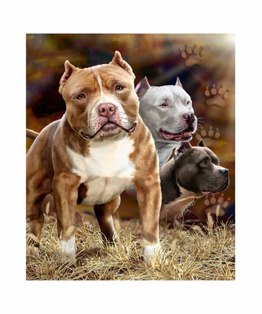 Signature Pit Bull Blanket (Queen Size)