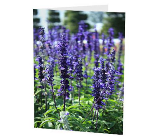 """Purple Spires"" Card"