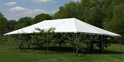 A canopy tent over trees to display the size