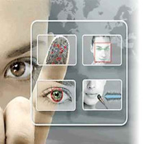 Neurotechnology VeriEye Iris Recognition - Licenses