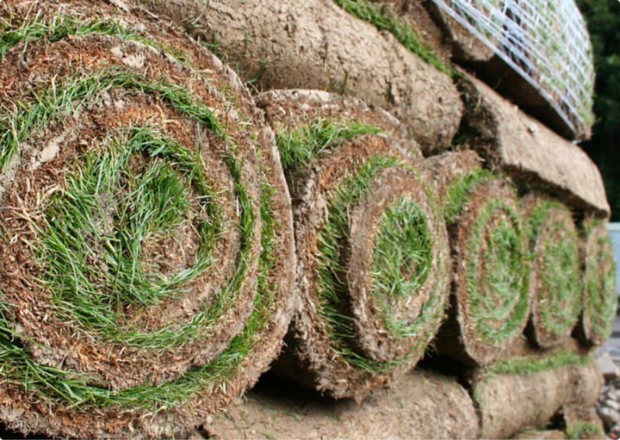 Rukeri Turf Soil Garden Amp Landscaping Suppliers