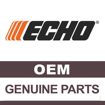 ECHO 10000005730 - PISTON KIT - Part Number 10000005730 (ECHO Authentic OEM Part)