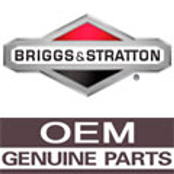 Product Number 490307 BRIGGS and STRATTON
