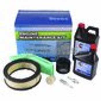 Engine Maintenance Kit / Briggs & Stratton 5119B - (BRIGGS & STRATTON) - 785525