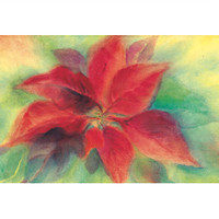 Christmas Flower postcard by M. v. Zeyl