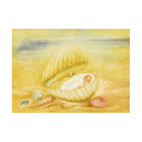 Child in a Shell card