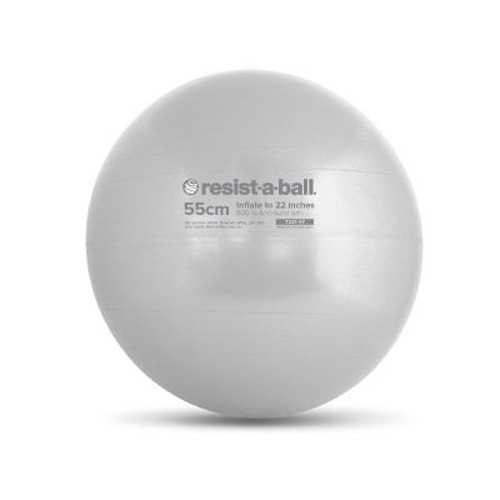 Stability Ball 55cm Silver