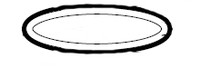 Hayward Max-Flo II Strainer Cover O-Ring # SPX2700Z4