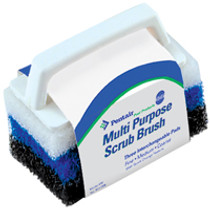 Pentair Scrubber with 3 Pads No. 650 # R111556
