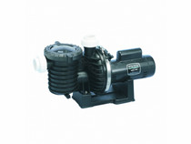 1-Speed Energy Efficient High-Efficiency Pool and Spa Pump