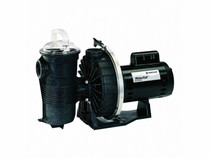 WaterFall 1-Speed Energy Efficient Specialty Pump with Strainer